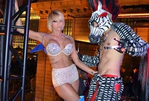 New Years Eve in Vegas / by Stacia iPartyinVegas