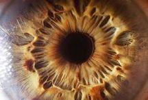 Eye Photos