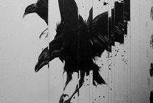 crows 鴉