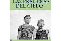 LIBROS MARAVILLOSOS/ WONDERFULL BOOKS / Libros