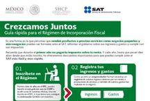 Régimen de Incorporación Fiscal / Conoce los pasos que debes tomar en cuenta si estás en el Régimen de Incorporación, con el que impulsaremos la formalidad en México.