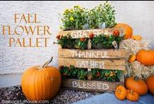 Fall Decor and Crafts / Projects for Fall and Thanksgiving.