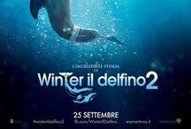 L'incredibile storia di Winter il delfino 2 / L'incredibile storia di Winter il delfino è un'avventura commovente e divertente allo stesso tempo sul potere di guarigione dei legami famigliari, umani e animali. Dal 25 settembre 2014 al cinema!