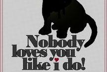 I <3 my dog!