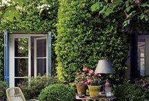 Shaxlee's Garden Delights / Gardens & outdoor surroundings that fill me with joy