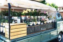 Riley / shiny leafeon gijinka (eon fam)  carefree florist