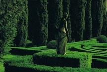 Mazes & hedge gardens