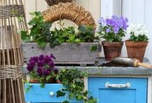 Garden Ideas / You can be creative with your garden. See how many different ways you can plant your flowers and arrange your equipment.