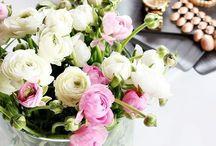 Flores y plantas... / by olga galisteo