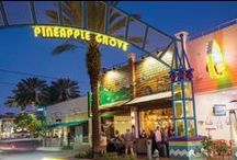 Pineapple Grove Art's District /   Pineapple Grove Arts District is located just off Atlantic Avenue in Downtown Delray Beach on NE Second Street. The area features an eclectic mix of cafes, boutiques, galleries and spas. There is exciting public artwork and working artists throughout the district.