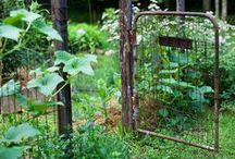 Dehors... / Jardins, campagne, silence