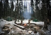 Camping / Whether you are a seasoned camper or camping for the first time, we have you covered. For the best campground destinations, camping gear, campfire songs or camping recipes, About Camping is your resource.