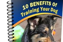 "Dog Training / FREE report ""10 Benefits of Training Your #Dog"""