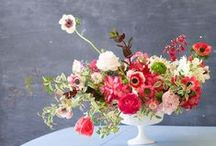 Inspired Daily / Flowers that inspire us daily!