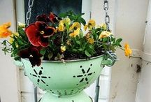 Garden Decor / by Martha Violette