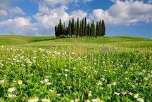 Toscana, Italia / Italie / Italy