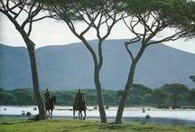 Parco della Maremma, Toscana