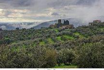 Artimino, Toscana