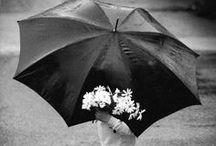 Umbrella & more... / .