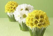 Art flora / цветы,букеты