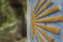Camino de Santiago en Galicia / Los mejores pines sobre el #CaminoDeSantiago en los tramos que transcurre por #Galicia