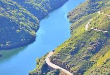 Inspiracion en la Ribeira Sacra / Conocer la #Galicia interior, esa en la que las bodegas que erigen en laderas imposibles a medio camino entre las provincias de #Ourense y #Lugo #SienteGalicia