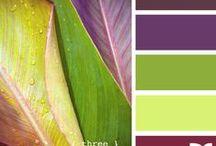 Colour inspiration / Сочетания цветов