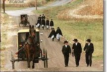 AMISH LIVING / Very interested in Amish way of life.  Would like my life to be as simple and serene as theirs appears to be / by theresa duncan