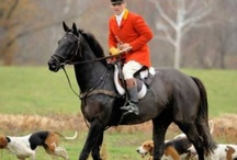 Passion for Foxhunting