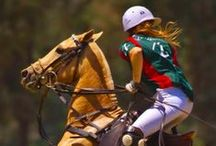 Polo life(style) / Polo girl at heart / by Style Flapper