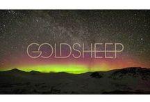 GOLDEN / GOLDSHEEP is GOLDEN