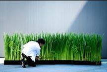 """Flower Artist Hideyuki Niwa"" Hideyuki Niwa Design"