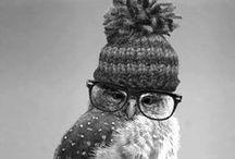 ~ Beanies ~ / • head warmers •