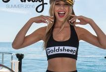 AHOY GOLDSHEEP 2016
