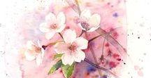 桜 / 桜 things & arts