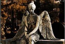 Cementerios  /  Cemeteries / by Maria Luisa Antunez
