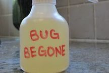 Bug Off! / Insect repellent and bite relief / by Kari Schultz Jermain