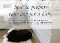 Baby prep & food ideas