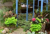 Shar's Garden
