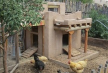 Chicken coops / There are so many cute, fantastic and special chicken coops around the world.