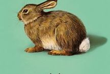 { inspired . #4 } / inspired by . Ladybird by Design . Ladybird Books . Nostalgia for Childhood . MidCentury . Traditional Values .