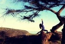 yoga & meditate