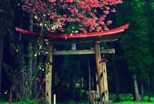 Snakku <3s Places in Japan / Amazing places to visit in Japan.