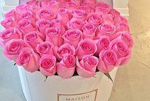 Flower Power / For the love of fresh flowers