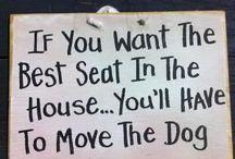 Hunder i heimen