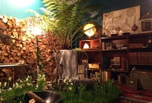 Frökabinettet / Frökabinettet  Växtälskarens hem är en skattkammare efter många  äventyrliga resor världen över.  De dyrbaraste souvenirerna kommer från  de djupaste skogarna, de ödsligaste stränderna,  de vidsträcktaste stäpperna och  de mest myllrande metropolerna.