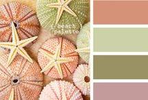 COLOURS / Colour palettes.