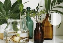 De La Tierra / Organic home improvement.