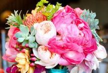 Flowers and Floristry / Beautiful floral arrangements and tutorials to inspire budding florists