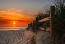 Seashore  / by Charlene Cook